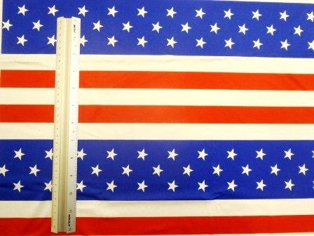 Lycra Patterned Fabric Hooray USA