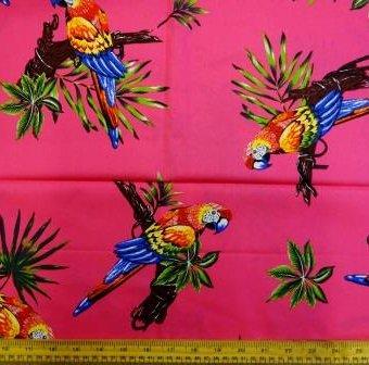 Ping Pong Parrots Cerise
